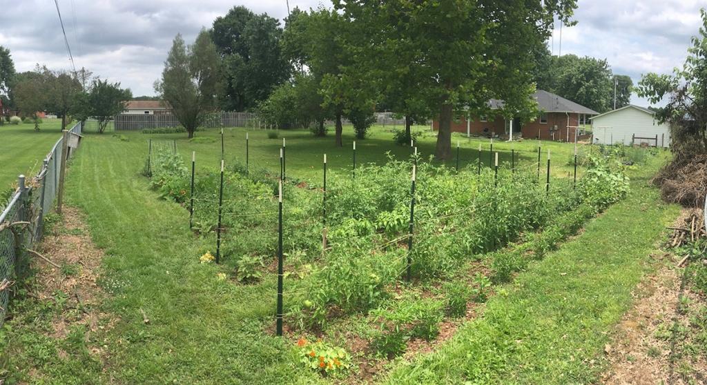 Woody Leslie's garden
