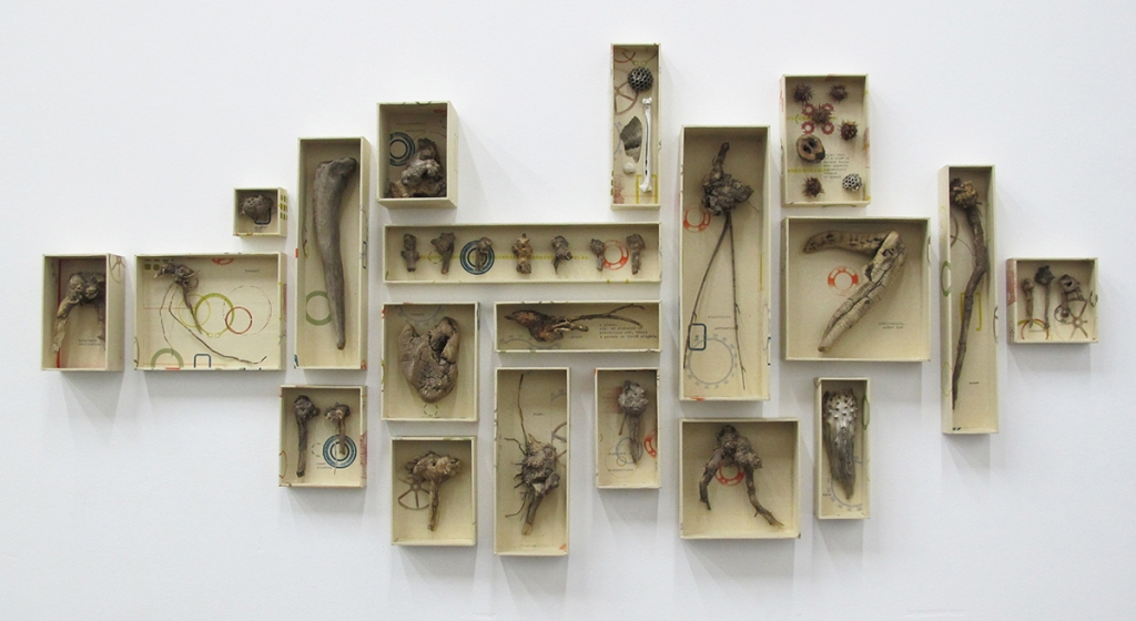 "Installation view of ""Archive of Now"" with an array of printed boxes containing driftwood and other found natural objects."