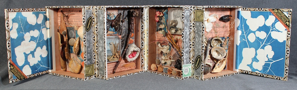 "Open view of the accordion book ""META-FOUR"" which contains found natural objects in box-like sections."