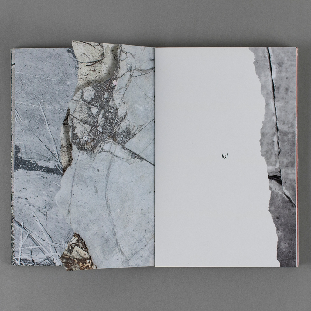 """This Land is My Land, inside opening with torn pages on the verso - the images are full color photos of pavement or gravestones. The recto is a white page with the word """"lol"""" centered, and a right margin edge with a facsimile torn edge, mirroring the verso."""