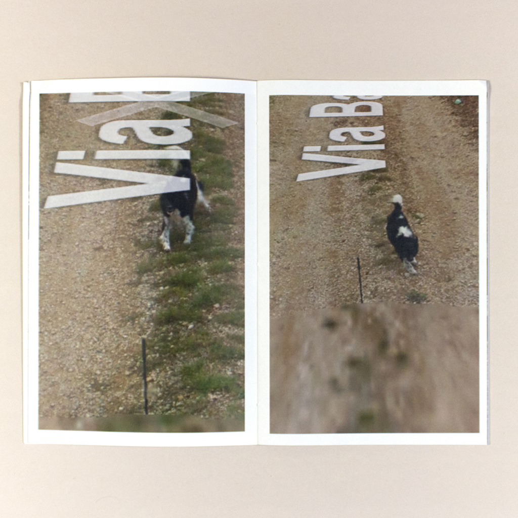 Attenti al Cane, Spread 6. Verso and recto show sequential images of a dog chasing after the Google car from which the image was taken. Both photos are partly obscured by Street View text. overlays
