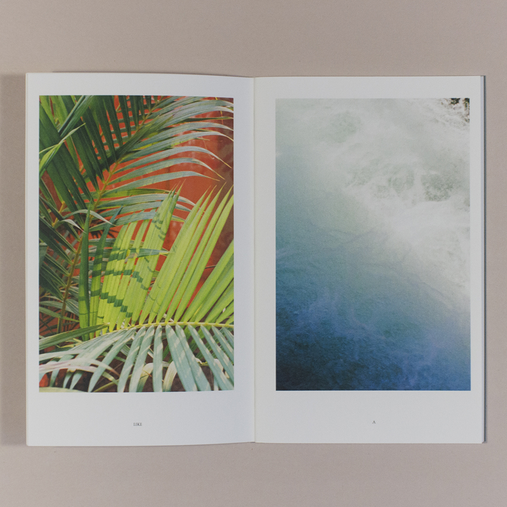 """Seed Vault, inside spread. Verso has a photo of a bright green palm frond against a red background above the word """"LIKE""""; recto has a close-up photo of water above the word """"A."""""""