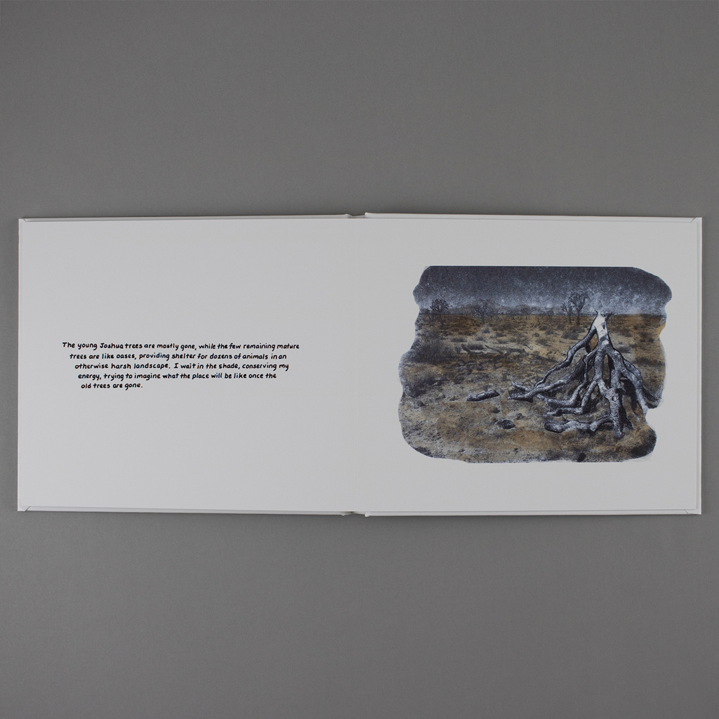 Final spread of Visible Climate, with text on verso and nighttime scene of Joshua Tree on the recto.